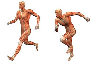 Massagem Desportiva