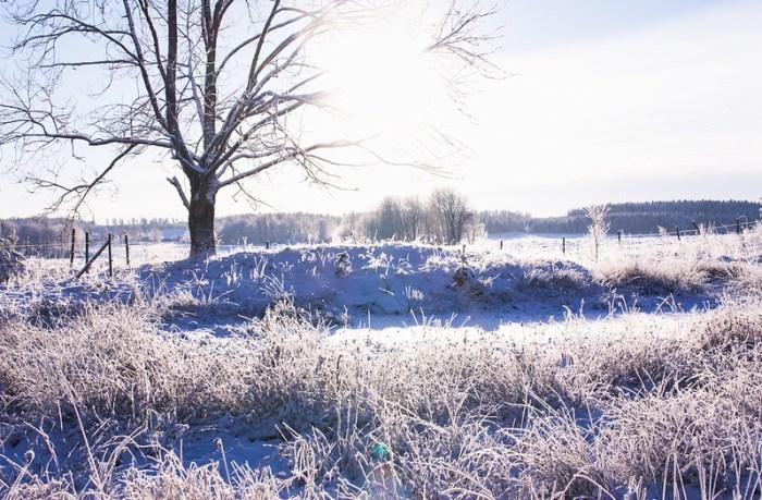 vinterslanten12