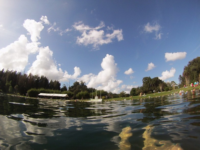 Many People Believe the Waters of Warm Mineral Springs Have Healing Powers