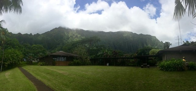Picture from the Ho'ommaluhia Botanical Garden