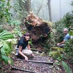 01 Viajfilos en Panama. Sendero Quetzal 17