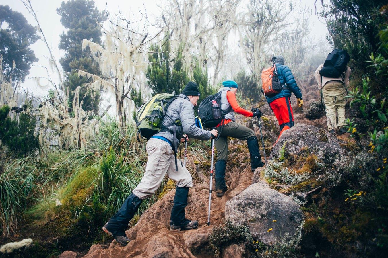 Kilimanjaro_5