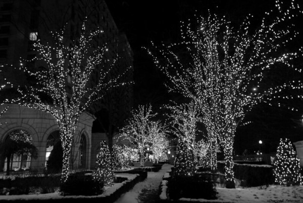 Christmas Lights by Charles (Chuck) Peterson