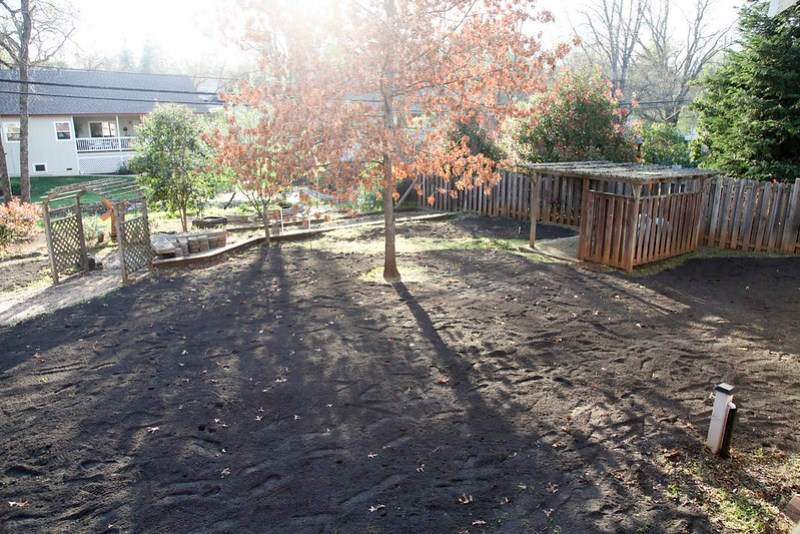 New Soil in the Backyard