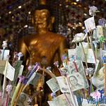 01 Viajefilos en Chiang Mai, Tailandia 180