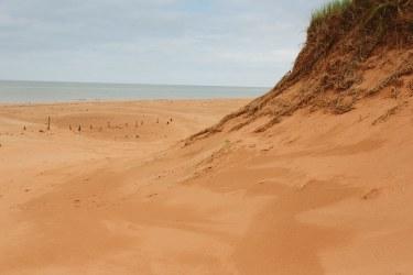 Beach Curves