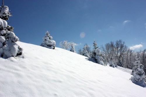 20150306_SNOW_157