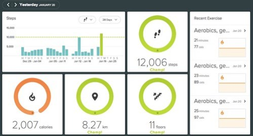 screenshot fitbit 01-20-15