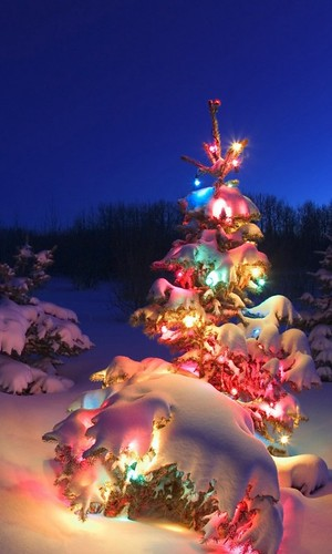 Beautiful Christmas Wallpaper Collection For Smartphone 2015