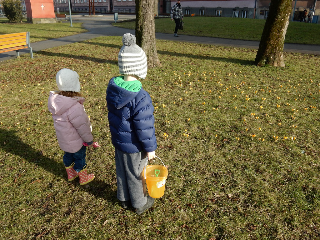 To the Park (3/4/15)