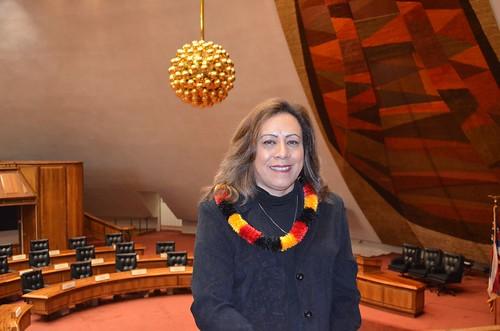 Rep Mele Carroll in Chambers