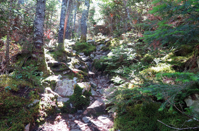 Desolation Trail Upper Steep