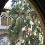 02 Viajefilos en Navarra, Monasterio de Veruela 004