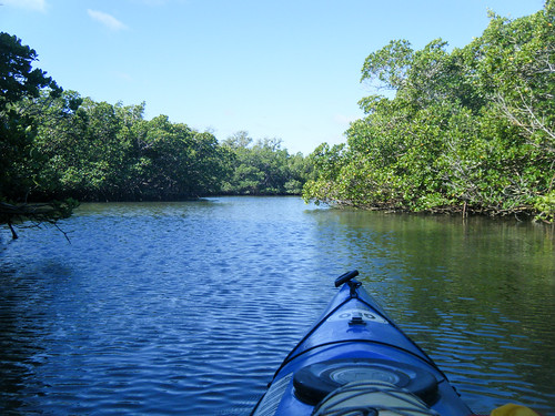 Indian River Paddling-11