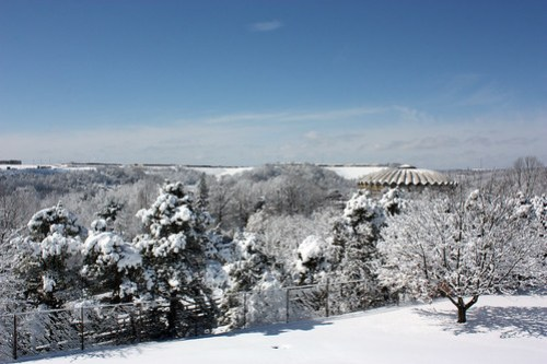 20150306_SNOW_170