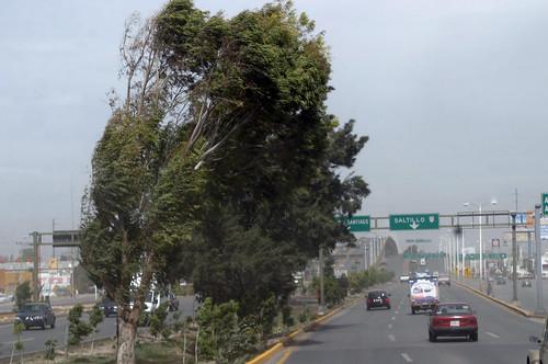 En alerta por fuertes vientos