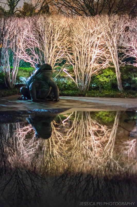 Bullfrog Statue Dallas Arboretum