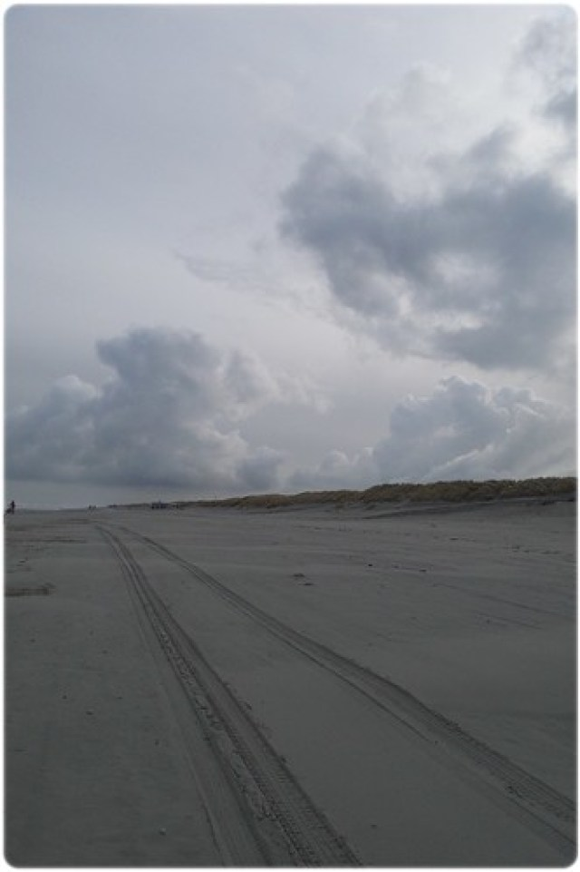 Bootcamp Survival Detox weekend op Ameland (16)