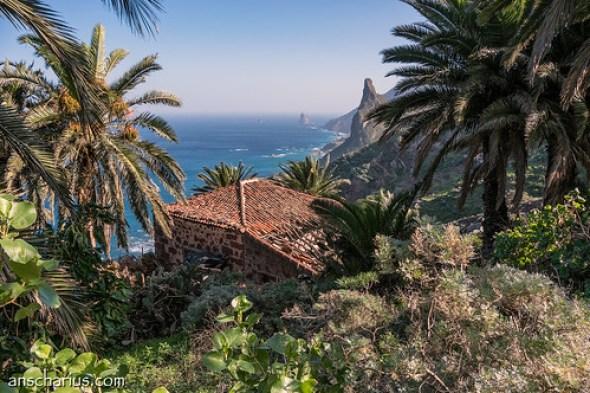 Canarian style near Taganana - Nikon 1 V3 & 10-100mm