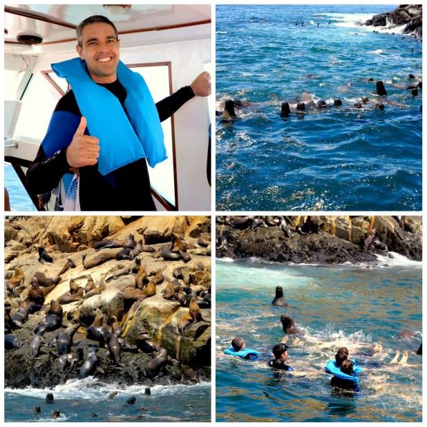 Tour Islas Palomino Lima