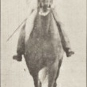 Horse Buckskin walking, lame right front foot, with rider (rbm-QP301M8-1887-654b~9).