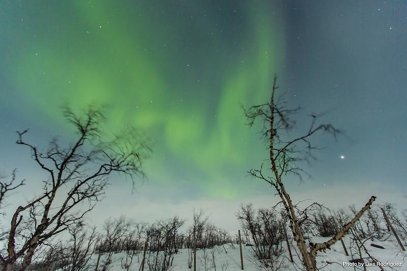 Auroras Boreales en Noruega-63