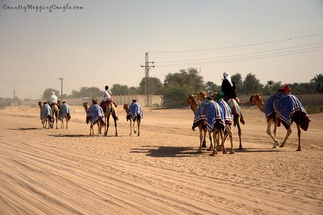 UAE rural life