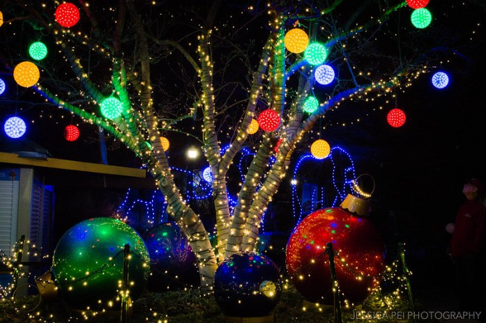 Christmas Tree Ornaments at St. Louis Zoo Winter Lights