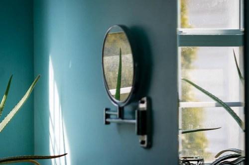 Mirrored Aloe
