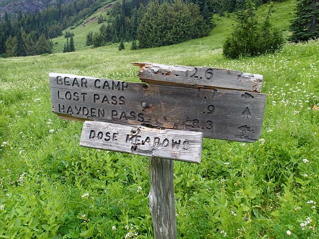 Dose Meadows Sign