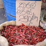 09 Viajefilos en Sri Lanka. Kandy 74