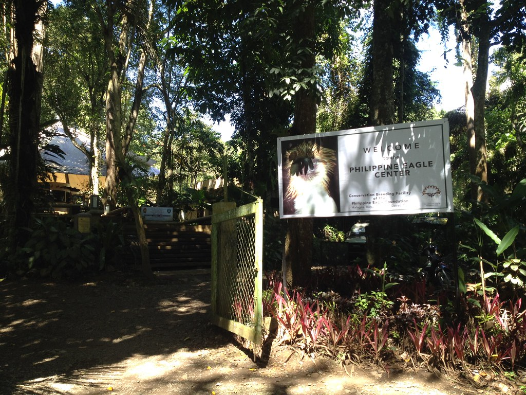 how to go to philippine eagle center from davao city