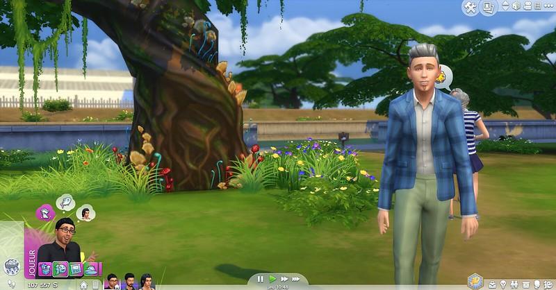 Les Sims 4 clairière forestière