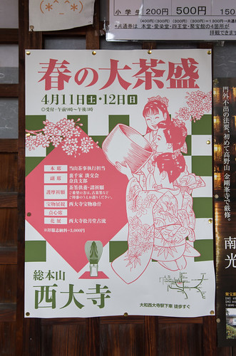 春の大茶盛-1.jpg