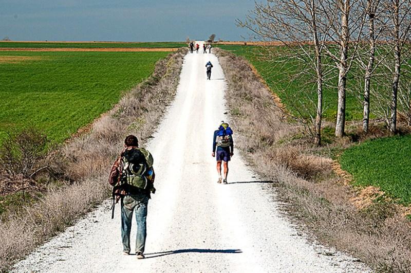 Camino de Santiago Meseta l4l