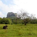 05 Viajefilos en Sri Lanka. Sigiriya 01