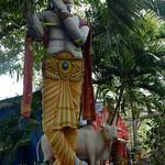 14 Viajefilos en Sri Lanka. Yala 44
