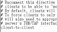 openvpn-client-to-client