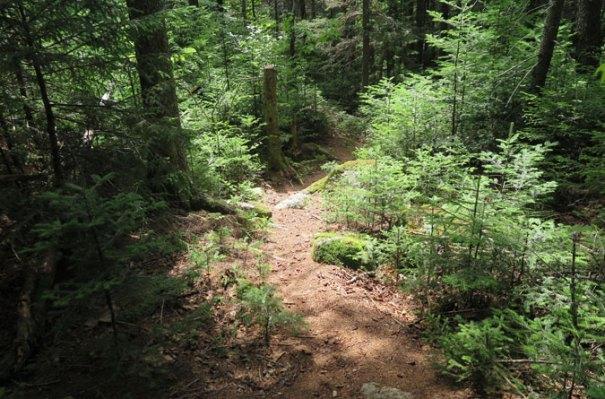 Wonalancet Range Trail