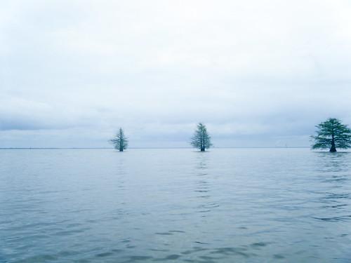 Lake Marion Plantation Islands-023