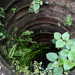 04 Viajefilos en Sri Lanka. Polonnaruwa 09