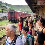 13 Viajefilos en Sri Lanka. Tren a Ella 11