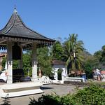 09 Viajefilos en Sri Lanka. Kandy 21