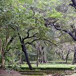 04 Viajefilos en Sri Lanka. Polonnaruwa 06