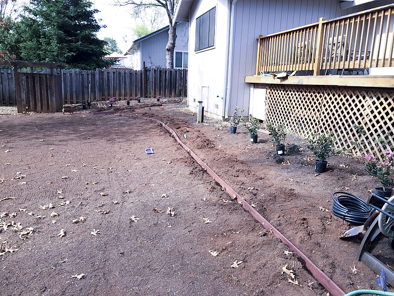 Putting in the Plants and Edging