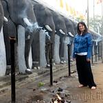 02 Viajefilos en Sri Lanka. Anuradhapura 27