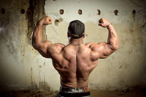 bodybuilding championship 2015  bodybuilding championship 2015 16132120293 5124a079af