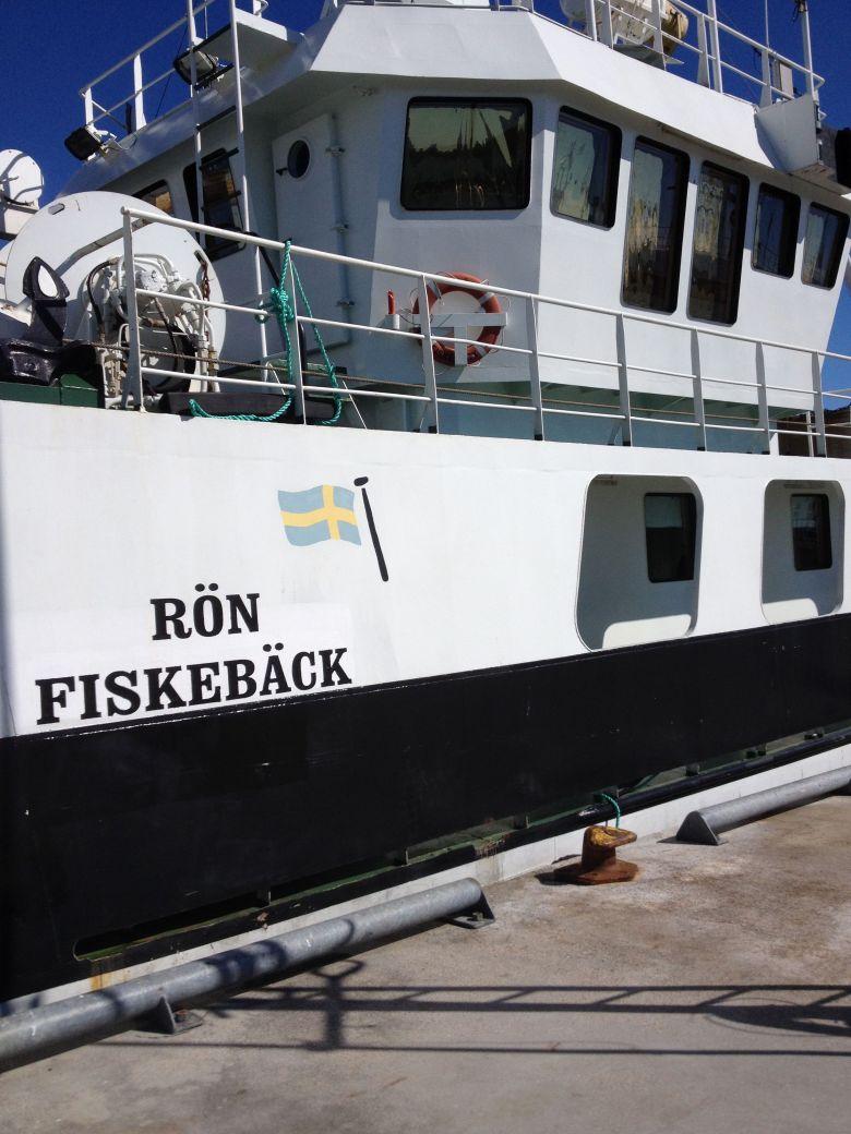 nya_rön_fiskeback6