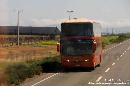 Pullman Bus - Limarí - Busscar Panorâmico DD / Scania (BGWP19)