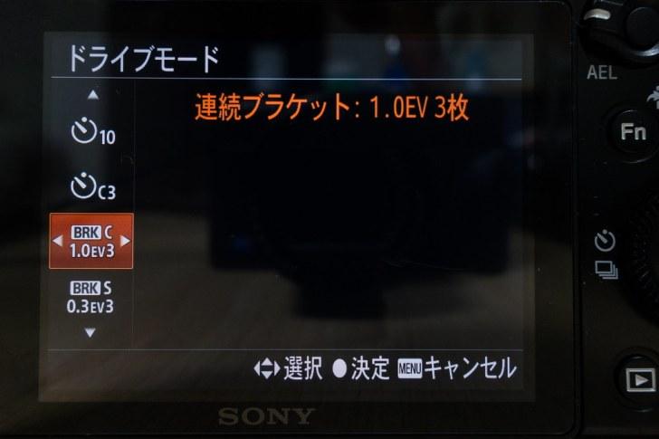 DSC07230.jpg